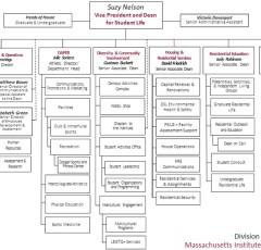 DSL Org Chart