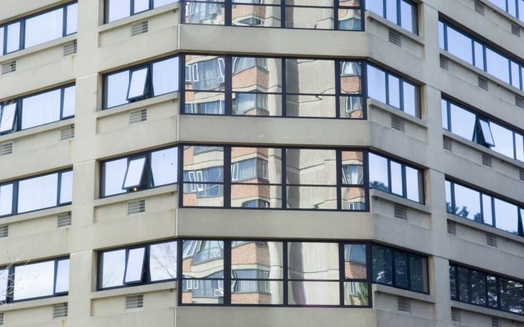 Tang Hall windows